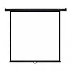 Экран проекционный, Deluxe DLS-M274-210, Настенный,Matt White,274x210, Черный